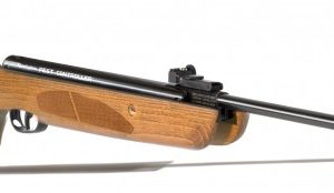 Remington Pest Controller .22 Air Rifle